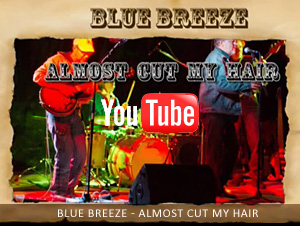 Blue Breeze - Almost cut my hair